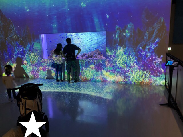 品川アクアパーク水族館1